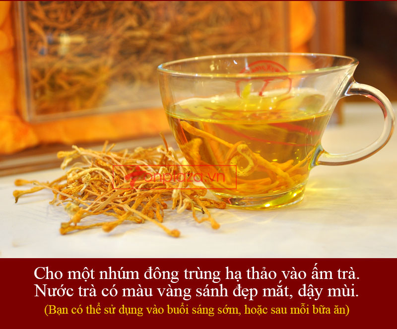 Nấm đông trùng hạ thảo Việt Nam sấy khô 100gr/hộp D205 5
