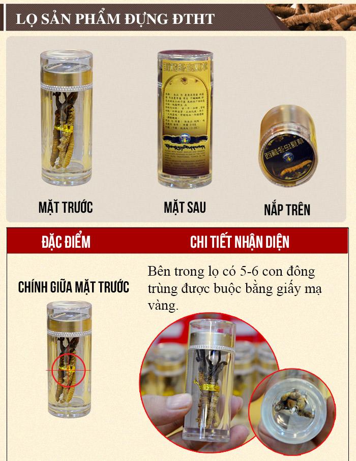 ĐTHT Tây Tạng nguyên con cao cấp 20g/hộp D009 5